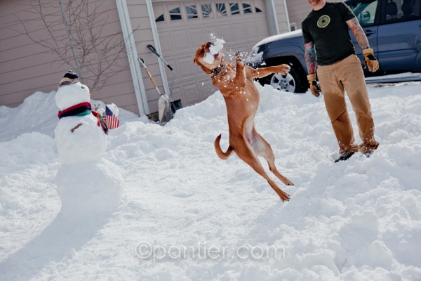 20120204 0204 Snowman 138