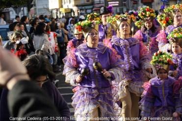 Carnaval en Cedeira 05-03-2011 - fotografía por Fermín Goiriz (47)