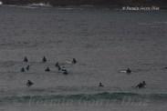 Surfeiros - Surfers - Surferos - Playa de Pantín (Valdoviño) - Galicia - fotografía por Fermín Goiriz Díaz