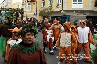 Desfile de Carnaval en Cedeira, 18 de febrero de 2012 - Carnaval Cedeira 2012 - Galicia -fotografía por Fermín Goiriz Díaz (96)