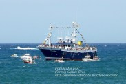 Procesión Marítima en honor de la Patrona de Cedeira - Cedeira, 16 de agosto de 2012 - fotografía por Fermín Goiriz Díaz (246)