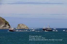 Procesión Marítima en honor de la Patrona de Cedeira - Cedeira, 16 de agosto de 2012 - fotografía por Fermín Goiriz Díaz (253)