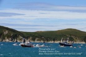 Procesión Marítima en honor de la Patrona de Cedeira - Cedeira, 16 de agosto de 2012 - fotografía por Fermín Goiriz Díaz (272)