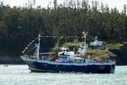 Procesión Marítima en honor de la Patrona de Cedeira - Cedeira, 16 de agosto de 2012 - fotografía por Fermín Goiriz Díaz (84)