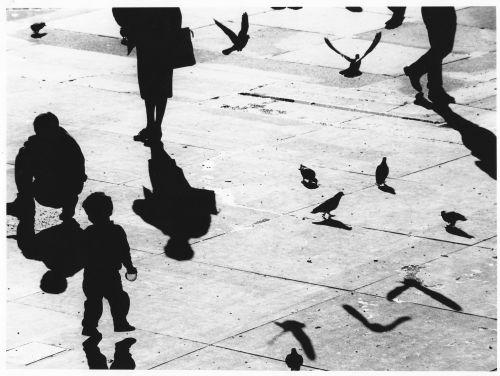 shadow_photography_matt_fr1