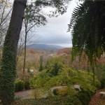 Making Memories: Biltmore Village