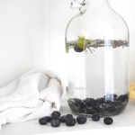 11 fresh hydration ideas