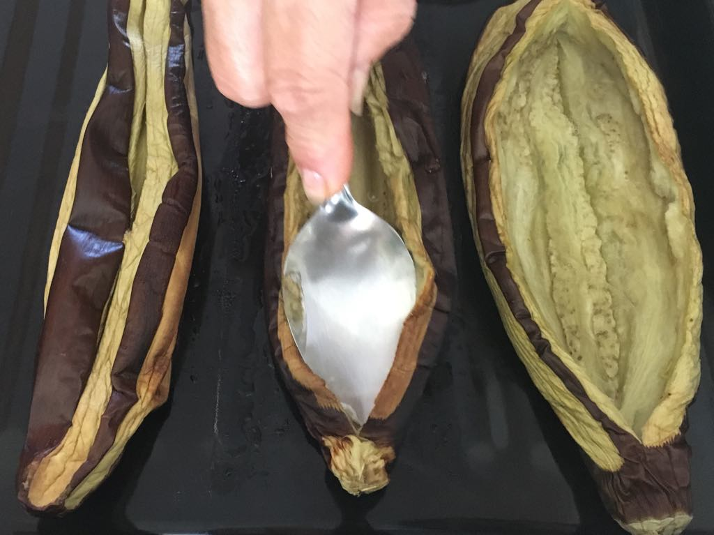 Opening up the Aubergine