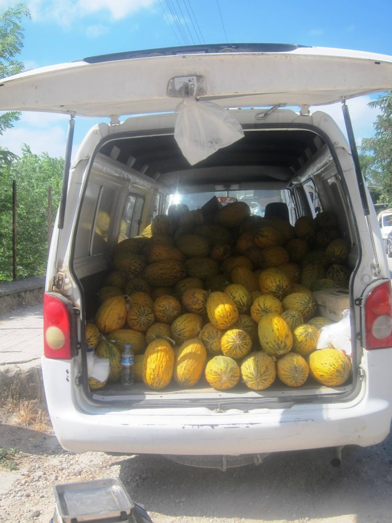 Selling melons from his car