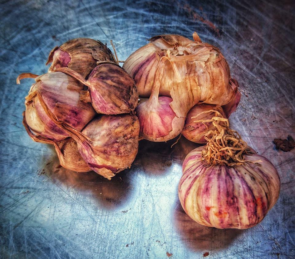 Garlic by Kat Kamstra - Seasonal Cook in Turkey