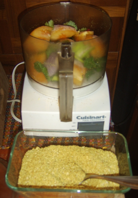 Almond Powder and Tomatoes in Food Processor