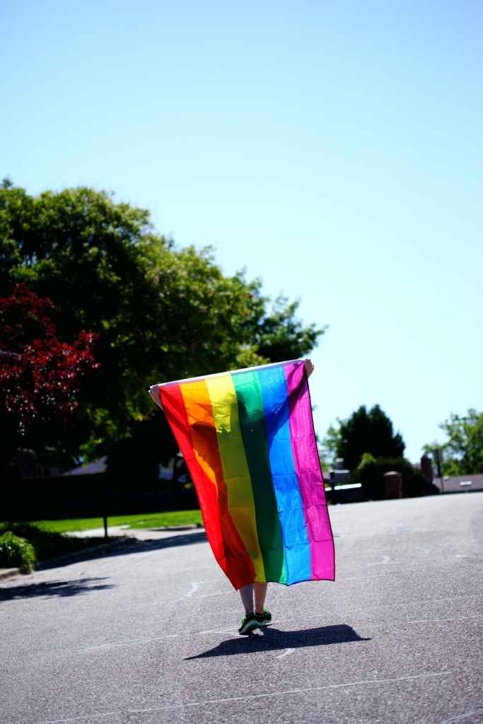 Les pensées intrusives ou phobies d'impulsions touchent également les questions d'ordre sexuel, comme l'homosexualité ou la pédophilie.