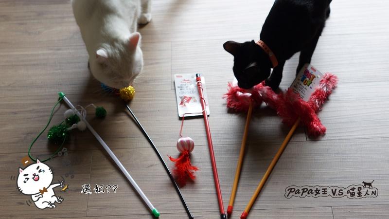 大創寵物玩具