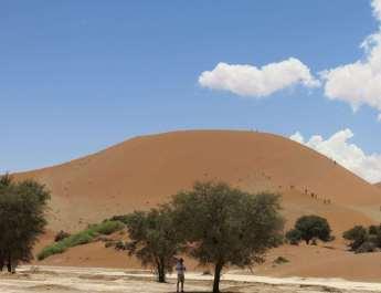 Rote Dünen am Sossusvlei