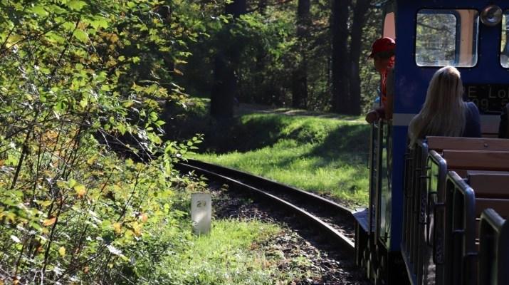 Die Parkeisenbahn Cottbus fährt zum Fürst-Pückler-Park in Branitz