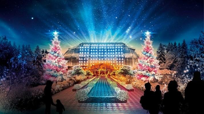 Weihnachtlicher Lichterzauber im Botanischen Garten