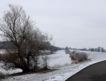 Winterliche Auenlandschaft am Deich von Criewen