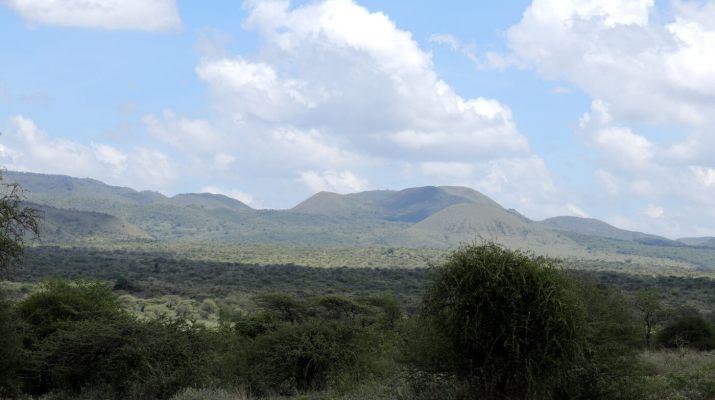 Busch und- Grassavanne im Tsavo West Nationalpark
