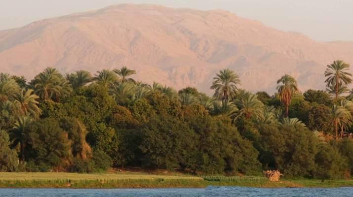Direkt hinter dem Nilufer beginnt die Sandwüste