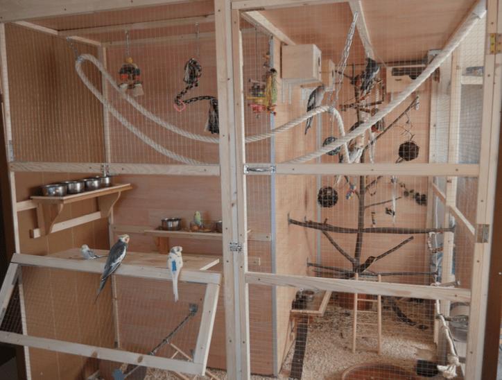 voliere selber bauen bauanleitung f r eine innenvoliere. Black Bedroom Furniture Sets. Home Design Ideas