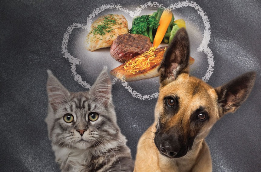Pet food digest