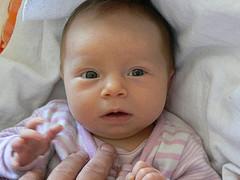 Baby Leni fotografieren und veröffentlichen