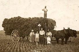 Lucien LANDRIEU (162) : homme sous le chapeau blanc