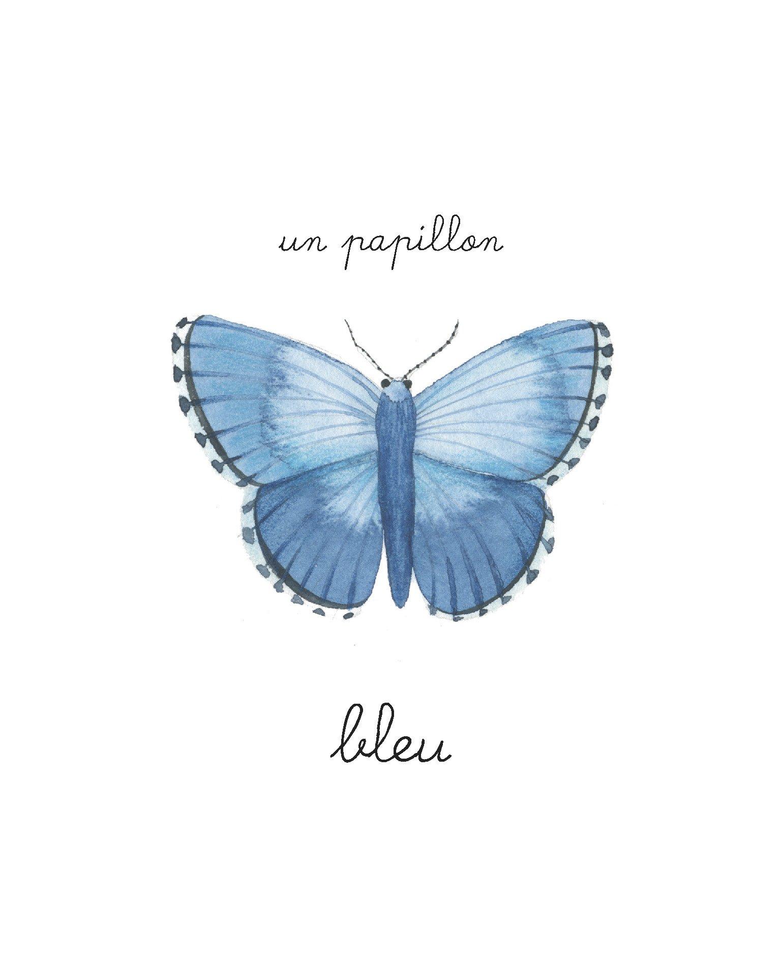papillon-bebe-balthazar