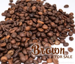 Brown Paparazzi Jewelry items for sale