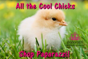 All the Cool Chicks shop Paparazzi