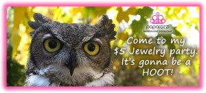 Come to my Paparazzi Jewelry party - its gonna be a hoot