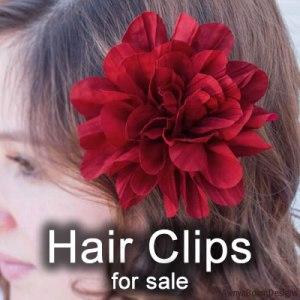 Hair Clips Paparazzi jewelry album cover photo