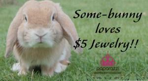 Some Bunny loves Paparazzi $5 Jewelry