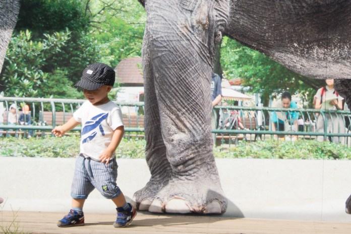 ゾウとツーショット(井の頭公園の動物園 / 東京・吉祥寺)