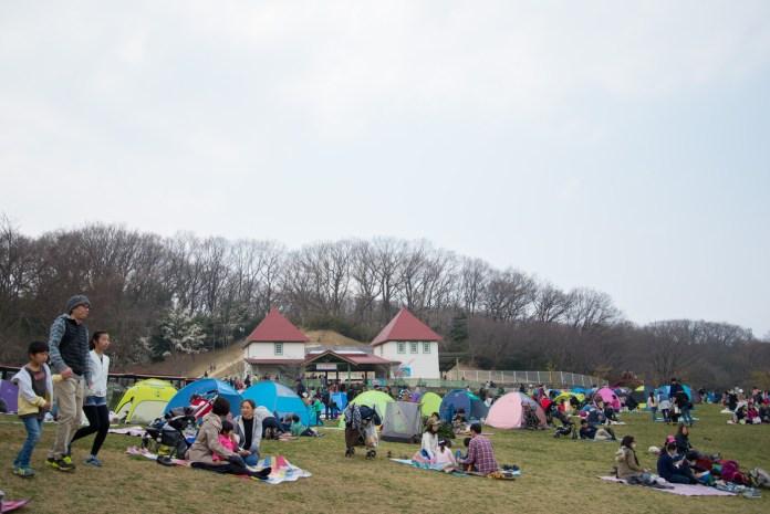 こどもの国 芝生広場とテント