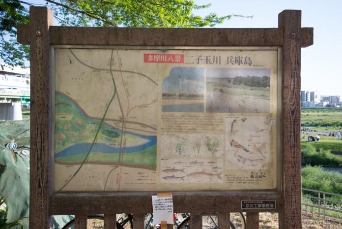 多摩川の開設看板
