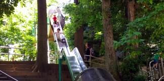 中根公園の長いすべり台