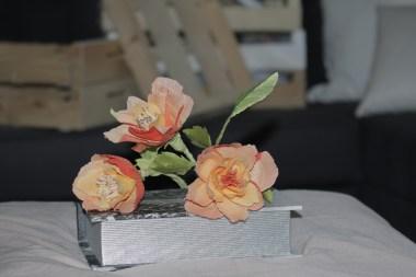 Rosas naranjas (9)