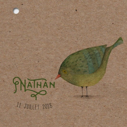 faire-part naissance papier kraft recyclé theme oiseaux