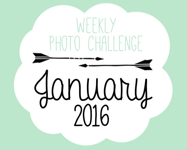 P&L Weekly Photo Challenge – January
