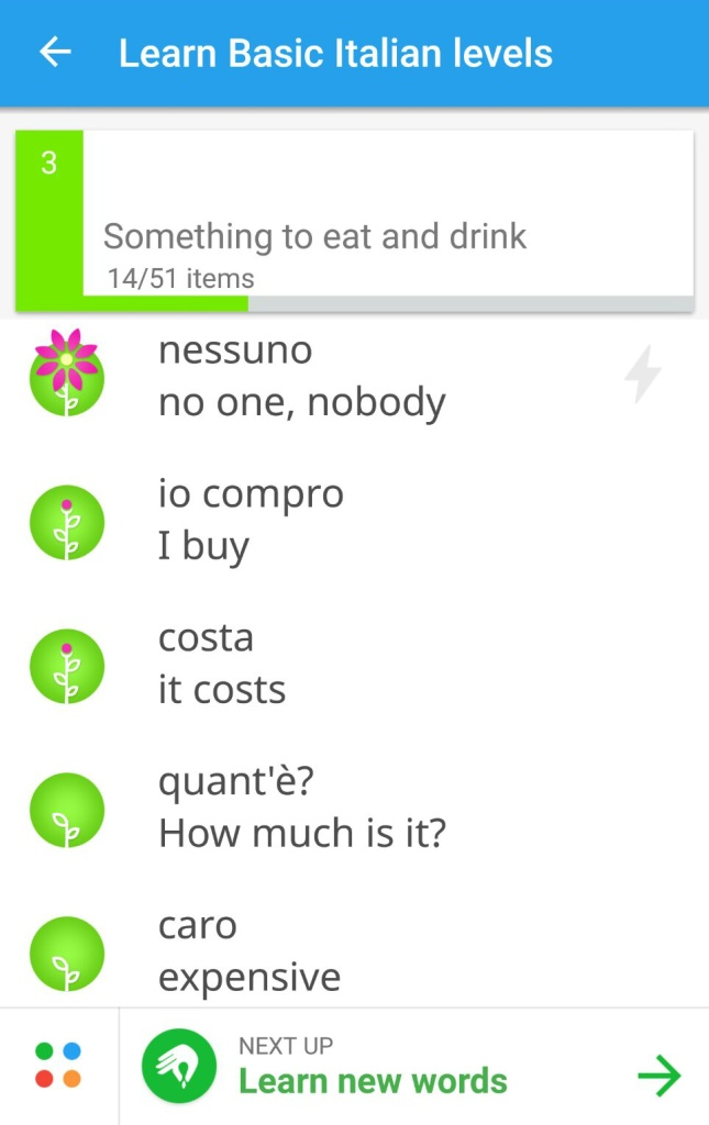 Memrise App Review 2