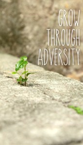 grow-through-adversity-paper-and-landscapes-free-wallpapers