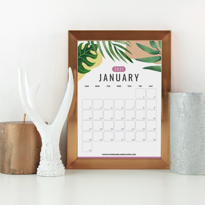 Free Printable Calendars for 2021 - JANUARY - Paper and ...