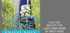 Add-On Example: Flat (2D) Box Set for Love Comes Home