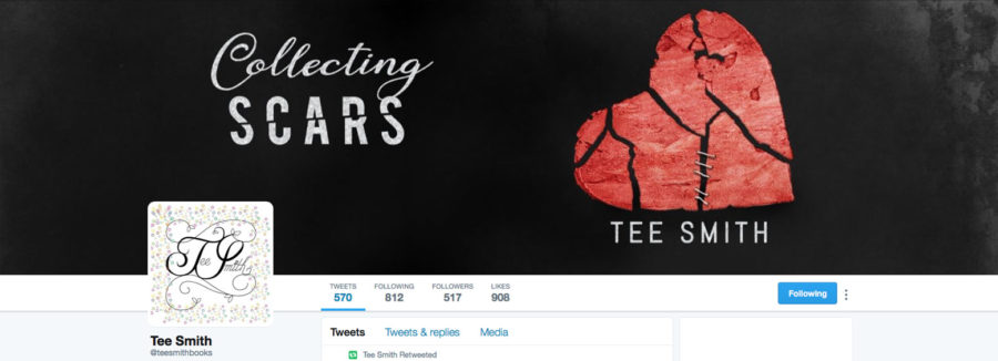 Add-On Example: Twitter Header for Collecting Scars