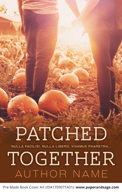 Pre-Made Book Cover ID#170907TA01 (Patched Together)