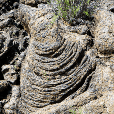 I love these formations in the lava.