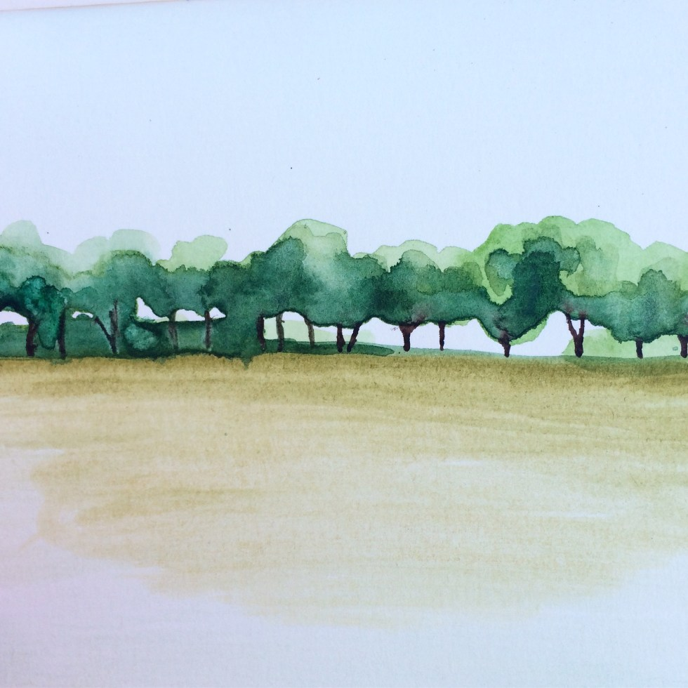 watercolour illustration trees and wheat field in Germany