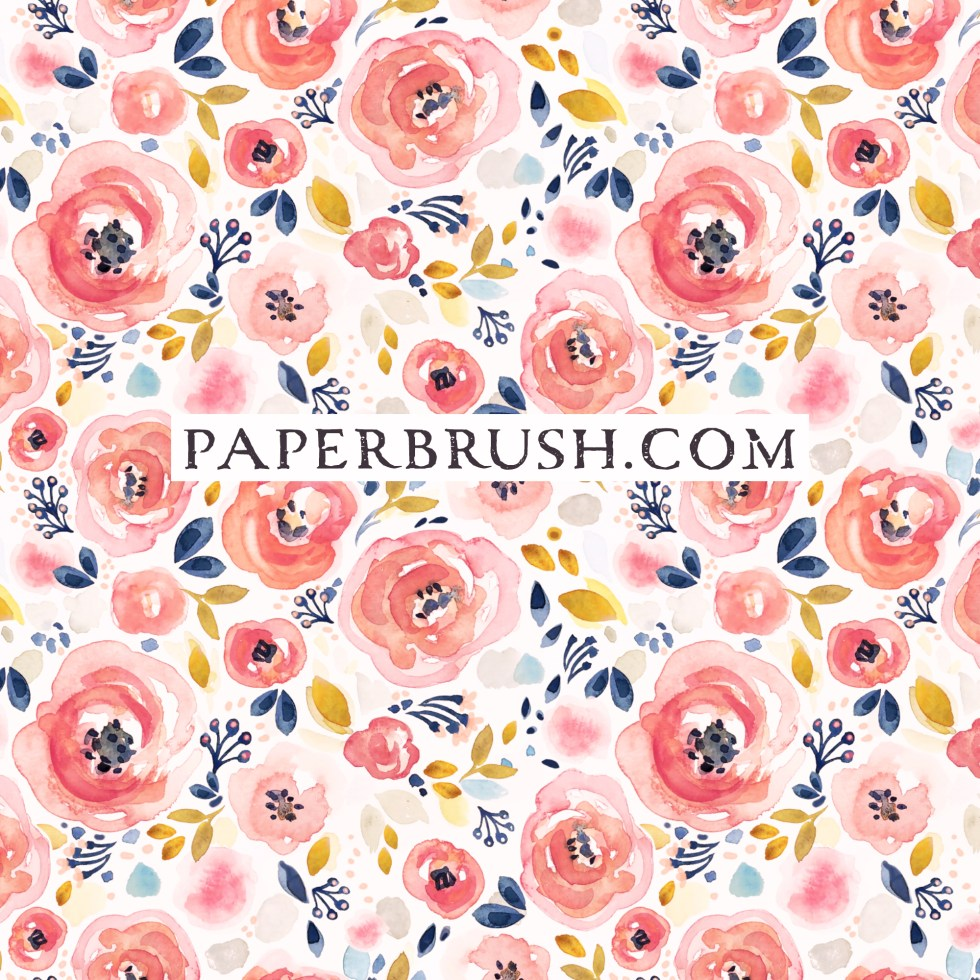 Roses pink navy gold on white by paperbrush