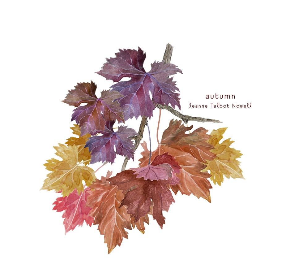 autumn watercolour leaves by Leanne Talbot Nowell